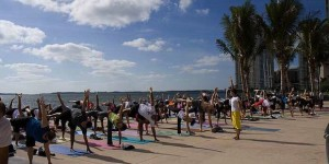 A group at Bayfront Park&#039;s free Yoga in the Park. Photo Courtesy Oscar Guedes and Sakine Gulec.