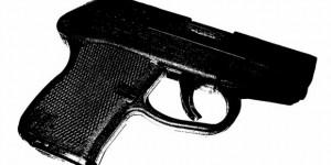 gun1 (580x348)