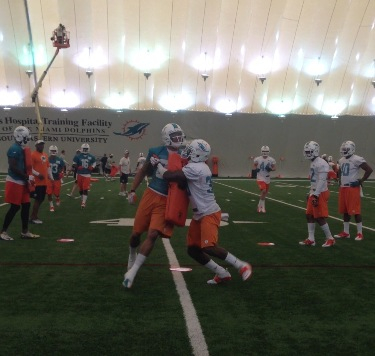 Dolphins Rookie Camp