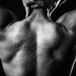 BodyBuilding_VEE2